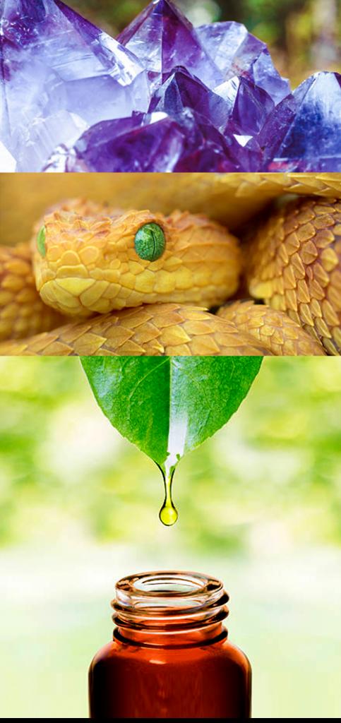 Die Homöopathie beinhaltet Informationen natürlicher Essenzen